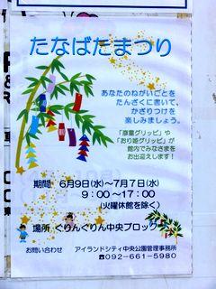 grippi_2010_7U_e.jpg