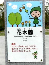 grippi_60_hanaki.jpg