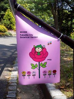 植物園のグリッピペナント