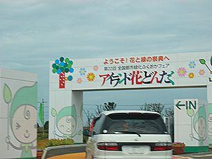 grippi_gate1.jpg