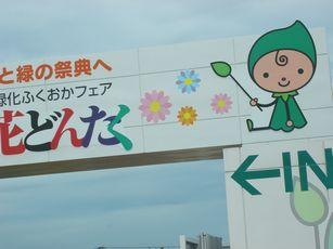 grippi_gate2.jpg
