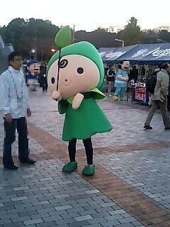 grippi_hakatanomori101127a.jpg