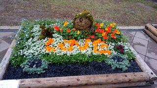 グリッピ花壇