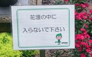 グリッピのサイン
