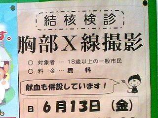 grippi_kenshin01.jpg
