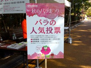 バラの人気投票看板のグリッピ