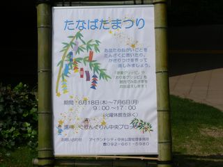 grippi_tanabata0907a.jpg