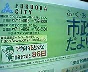 grippi_tayori.jpg