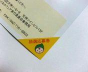 grippi_ticket_2.jpg