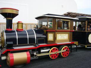 grippi_train1.jpg